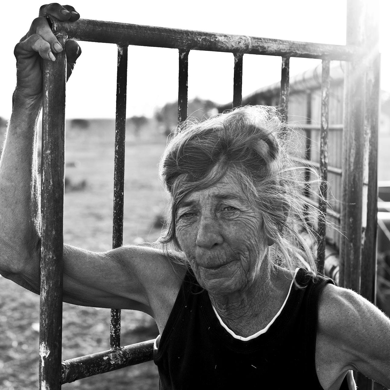"Jackie Lane watched her horses feed in Archer City, Texas on June 1, 2011. Larry McMurtry called her ""the last real cowgirl."" Photo by Danny Fulgencio"